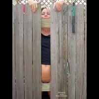 Lucious Mending Fences